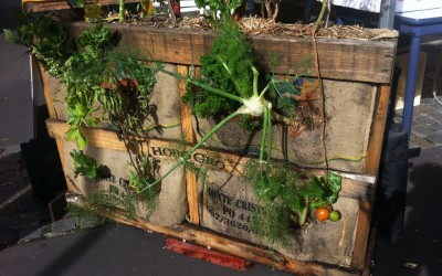 Compost Kingdom